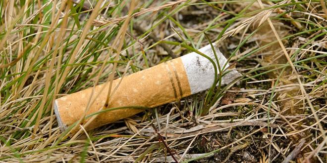 Is de Elektronische Sigaret beter voor het Milieu?